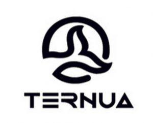 TERMUA_INDUSTRIA495X400